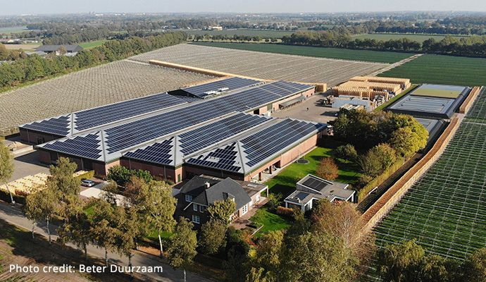 Winery in the Netherlands with SunPower Performance solar panels