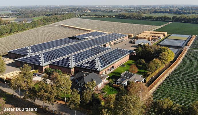 Viñedo con paneles solares SunPower Performance