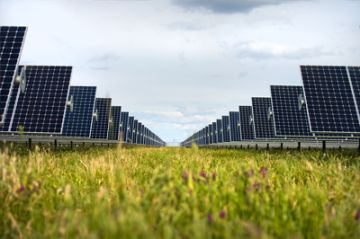 solar panel array in a field