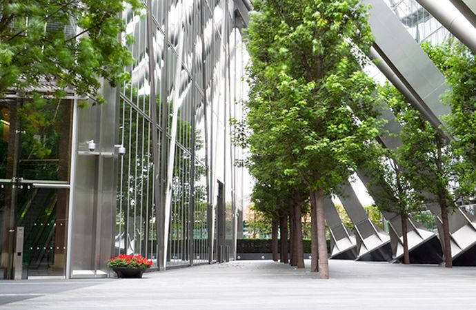 Trees inside of a building with glass ceilings