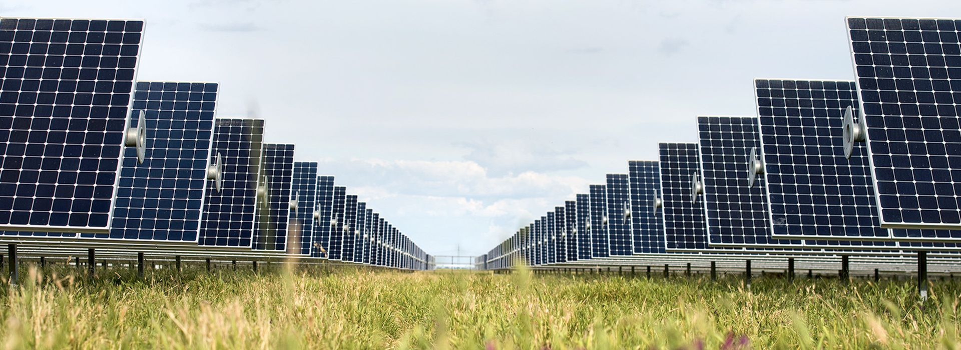 ground mount solar panels in a green field